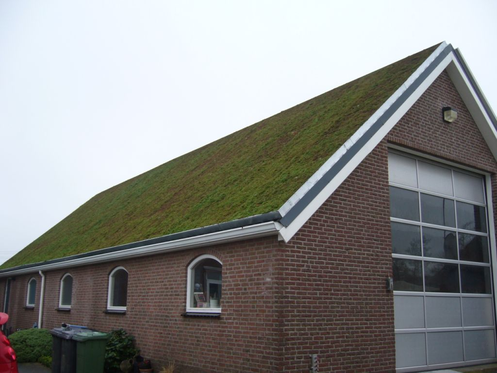 Extensive Brown And Green Roof Gardens Green Roofs