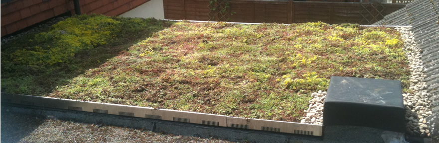 Extensive brown and green roof gardens - Green Roofs