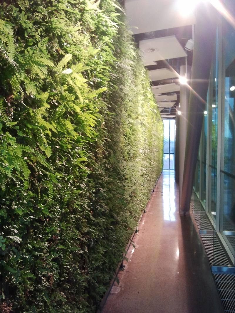 Specialists In Living Green Walls Tiga Europe Limited
